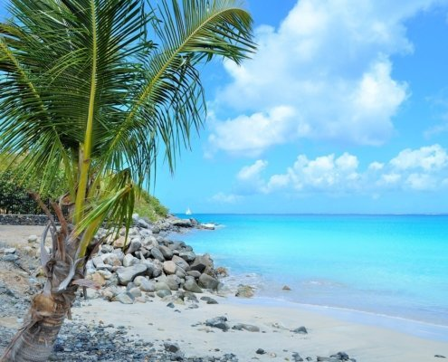 vacanze in barca a vela ai caraibi con skipper barbusa